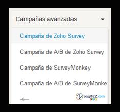 integracion-campaigns-survey-sagitaz