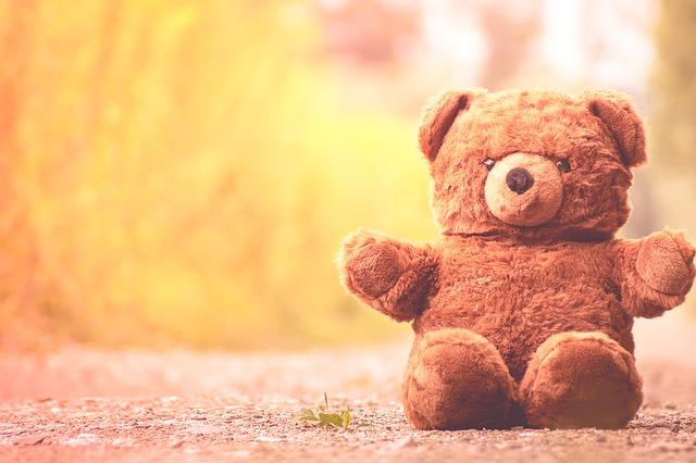 teddy-bear-1187660_640
