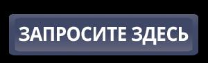 boton azul con texto en ruso de newsletter