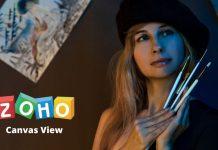 Canvas View, la vista de lienzo de ZOHO CRM.
